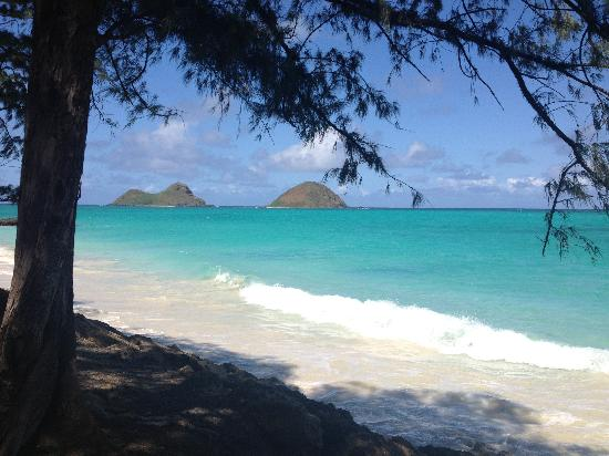 Bellows Beach Windward Side Oahu Stories And